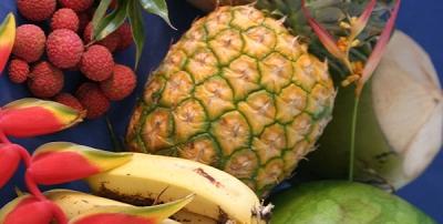 Kauai farm to table